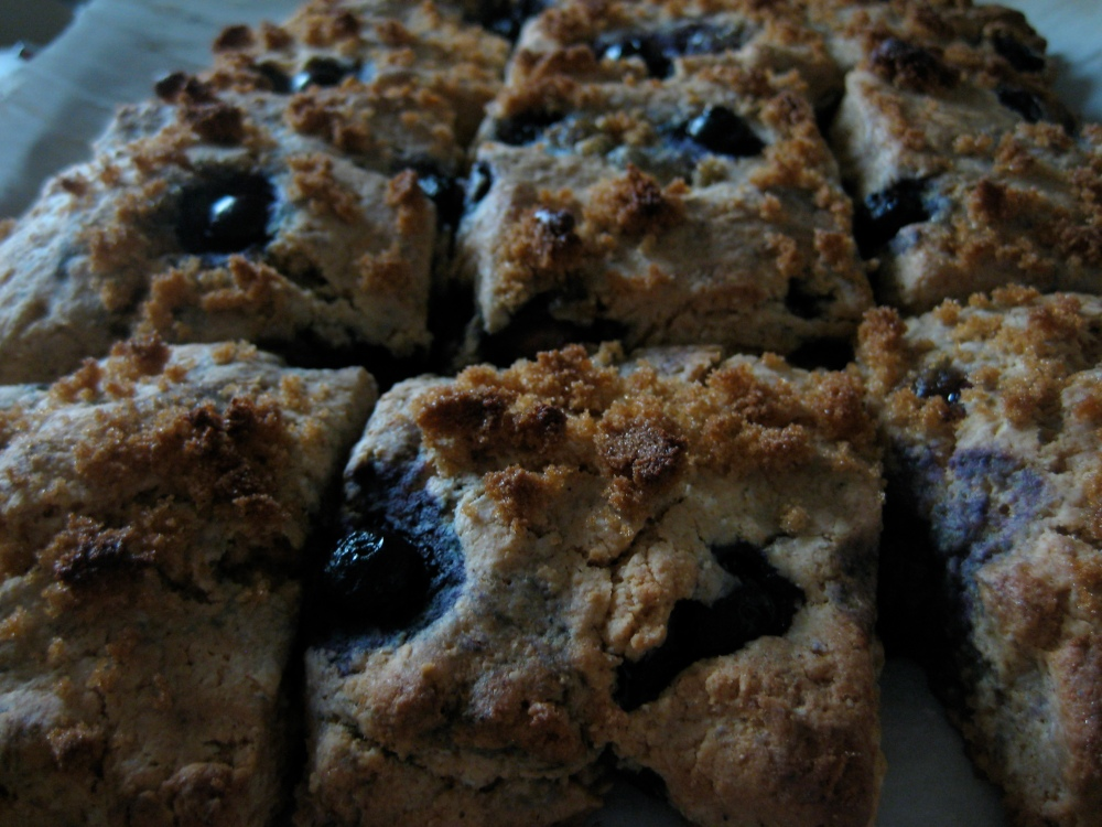 blueberry maple syrup scones